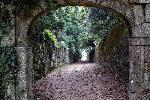 Amigos da Montanha - Percurso Pedestre Magusto | Braga